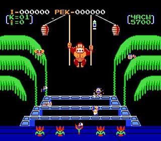 Donkey Kong 3 играть онлайн
